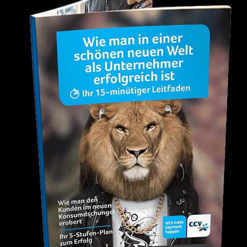 CCV Complete Campaign Leitfaden
