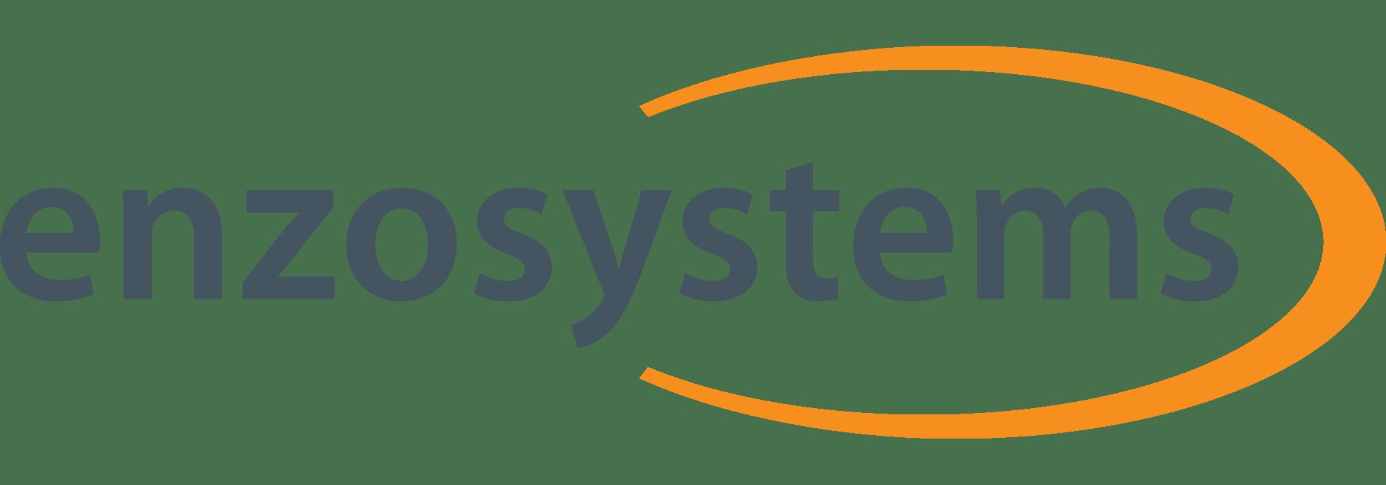 logo Enzo Systems